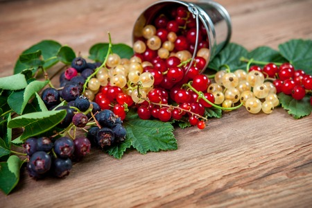 Berries on Wooden Background. Summer  currant and mulberry. Agriculture, Gardening, Harvest Concept photo