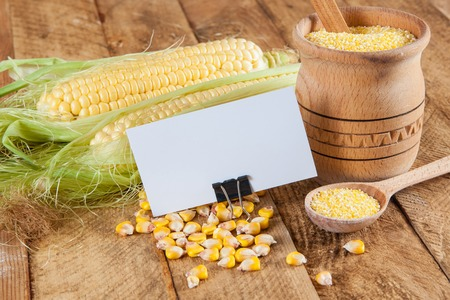 agronomist: Photo of business cards. Template for branding identity. For graphic designers presentations and portfolios. With corn on wooden background. Subject agronomist, agriculture