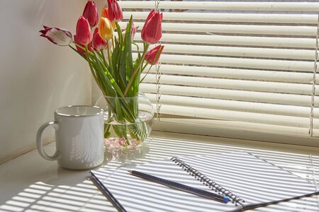 Spring still life scene. Cup of coffee, opened notebook,  on windowsill.  Floral composition with tulips. Фото со стока