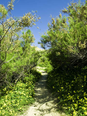 seemingly: Lone countryside uphill path in Malta, seemingly leading to the skies into nowhere