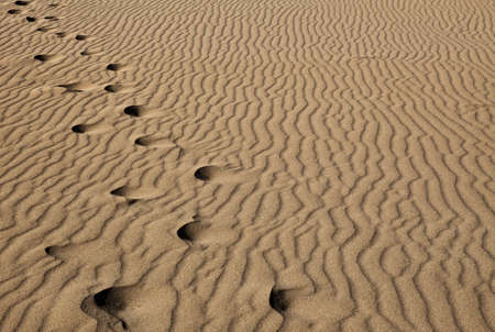 Abstract image showing footstep trail in desert sand dunes photo