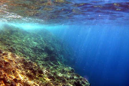 fond marin: Belles couleurs juste sous la surface