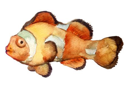 watercolor sketch: a fish on a white background Stock Photo