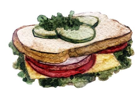 watercolor sandwich on white background Stok Fotoğraf - 65496510