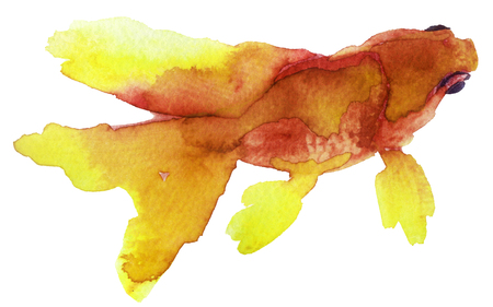 watercolor sketch of a goldfish on a white background