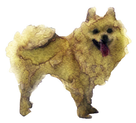 watercolor sketch of a dog on a white background