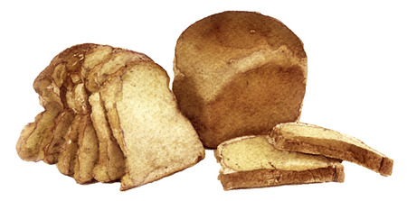 raisin: watercolor sketch of bread on a white background