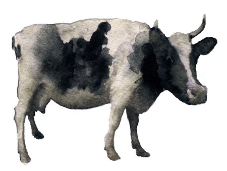 milker: watercolor sketch of cow on a white background