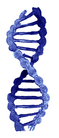watercolor sketch of DNA on white background Stock Photo