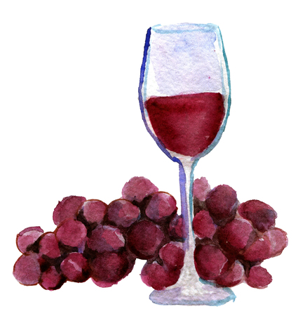 watercolor sketch of glass of vine and grapes on white background