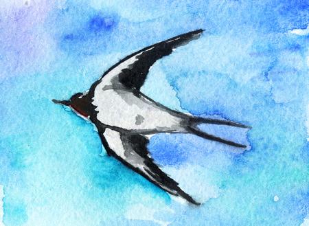 swallow bird: watercolor sketch of swallow bird Stock Photo