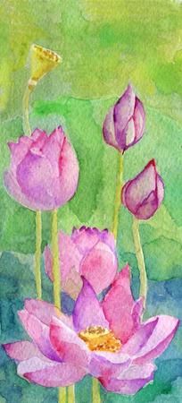 watercolor sketch of lotus flower