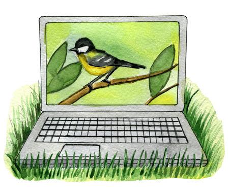 waterverfschets van laptop met vogel op witte achtergrond wordt geïsoleerd die