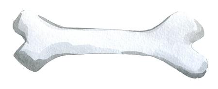 waterverfschets van wit die hondbeen op witte achtergrond wordt geïsoleerd