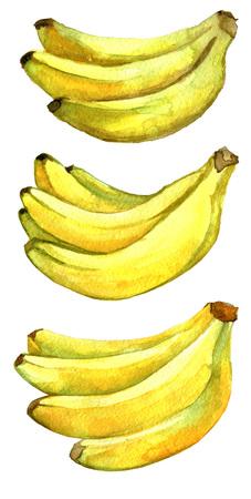 aquarel schets van bananen geïsoleerd op een witte achtergrond