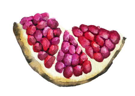 watercolor sketch of ripe pomegranate fruit isolated on white background