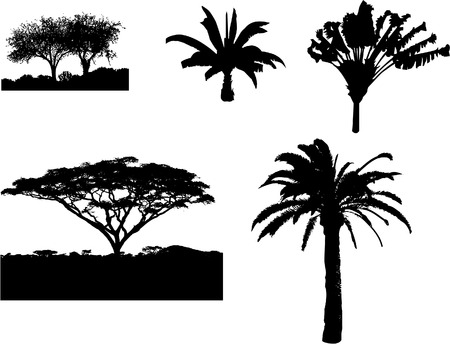 Vector of different tropical trees. Illustrator 8.