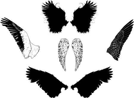 Vector wings in eps8. Easily editable, each on different layers. Illustration