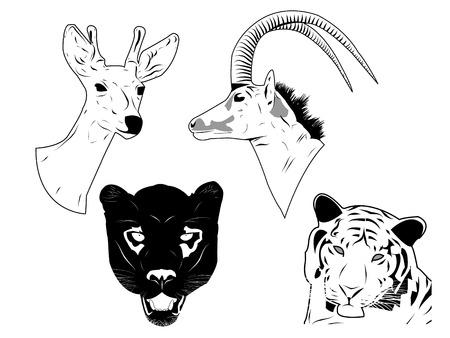 Hand drawn of wild animals head. Easily editable.