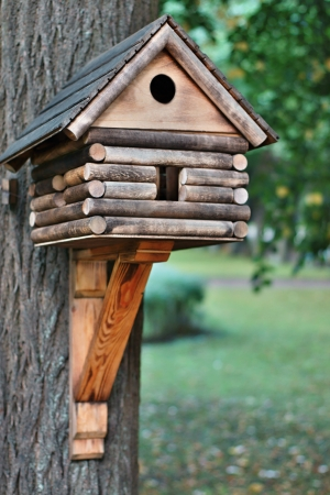 The dwelling for wild birds is made and established on a tree by people, lodge for birds