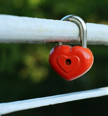Symbol of love, fidelity and devotion in the form of the closed lock of red color