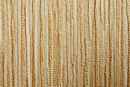 Fulvous corrugated texture for a background and space filling Stock Photo - 21922571
