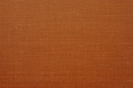 impregnated: Texture of an old imitation leather on book covers for an abstract background