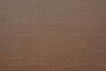 impregnated: Texture di un vecchio similpelle sul libro copre per uno sfondo astratto Archivio Fotografico