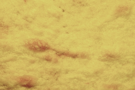 Texture of the baked dough for an abstract background photo