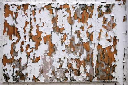 dabs: Abstract texture with effect dabs of a brush white oil paint on old wooden boards