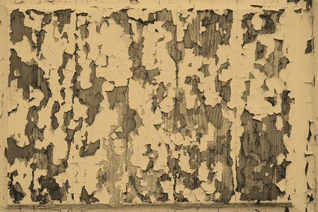 peeledoff: Texture of the old peeled-off paint for an abstract background