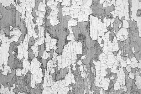 imitation leather: Texture in bianco e nero di un vecchio logoro similpelle