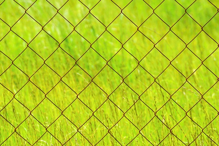 the old rusty chain-link on an indistinct background of a green grass for abstract textural backgrounds photo