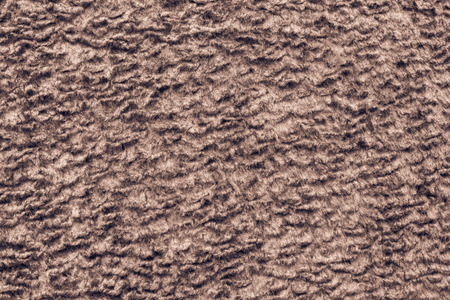 shorthaired: abstract texture of brown color of short-haired fur fabric with wavy curls for empty backgrounds