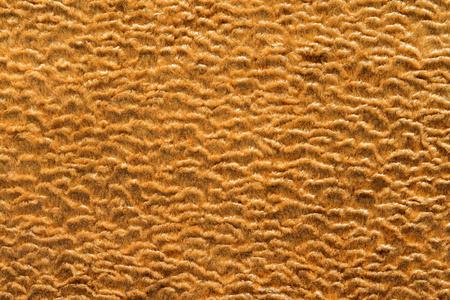 shorthaired: Textura abstracta de color dorado de tela de piel de pelo corto con rizos ondulados para los fondos vac�os
