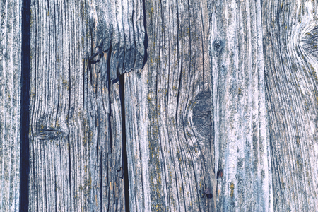 decayed: rough texture of the old decayed wooden boards with cracks for abstract backgrounds