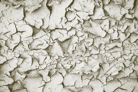 sandy soil: abstract dirty gray texture for backgrounds with cracks and with a peel of the shriveled sandy soil