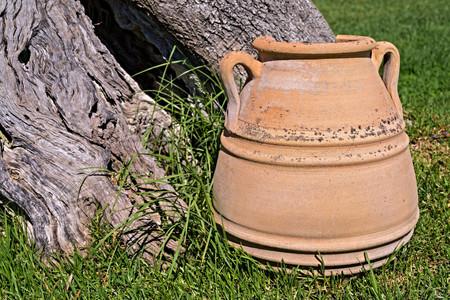 greek pot: una grande antica primo piano piatto in ceramica contro un tronco di un vecchio albero con una cavit�