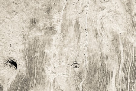 threadbare: abstract texture of a dirty surface of an old tree for backgrounds and for wallpaper Stock Photo