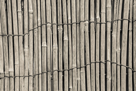 wiped out: textured a curtain or a screen from a dry reed or straw for an abstract background and for wallpaper of beige color Stock Photo