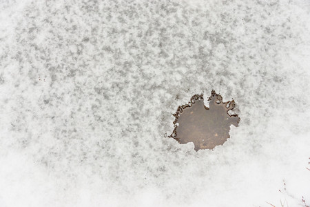 thawed: small winter thawed patch on a snow pool and a blank space for the text Stock Photo