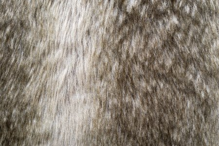 fleecy: abstract soft texture of shaggy or fluffy fur for a fleecy background