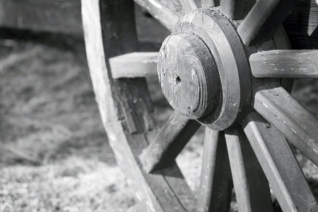 spokes: of gray color fragment of a big wooden wheel with spokes for an ancient cartage and for the cart or the vehicle