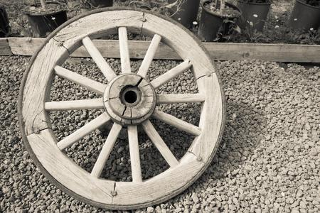 spokes: one isolated old big wooden wheel with spokes for the ancient cart closeup and a blank space