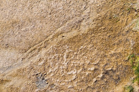 ooze: textured surface silt or ooze of brown color for a natural background and for wallpaper