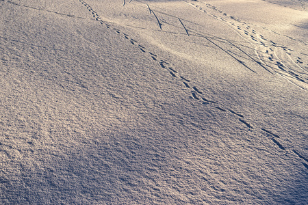 winter background landscape or texture of snow and traces on snow on a glade