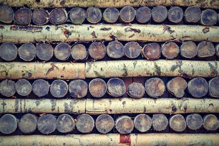 texture of a tree of birch firewood in a stack for an abstract background in the photo in retro style