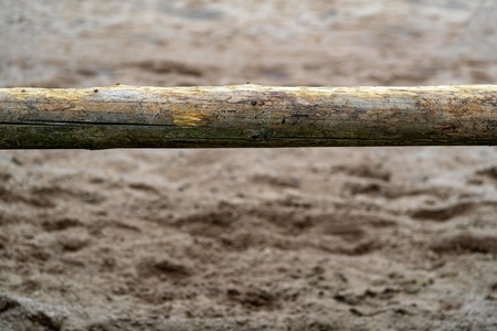 one wooden big log is located in the foreground horizontally and closeup on an indistinct abstract background