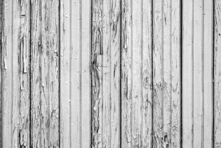 the old painted texture of the panel from wooden boards for a background or for wallpaper of gray color of monochrome tone