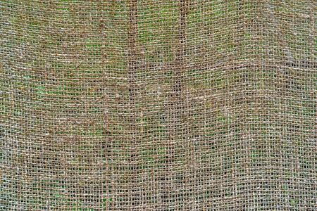 Texture of rough mesh fabric or textile material for a background and for wallpaper. 스톡 콘텐츠